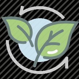green tea, harvest, herb, leaf, matcha, tea leaf, tea leaves icon