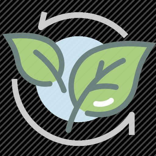 Green Tea Harvest Herb Leaf Matcha Tea Leaf Tea Leaves Icon