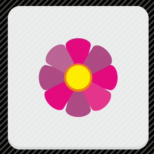 bud, flower, plant, rowan, spring icon