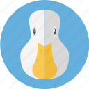 duck, poultry, white duck icon