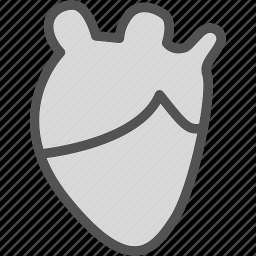 heart, human, love, organ icon