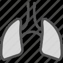 air, human, lungs, organ