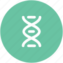 biology, genetics, dna chain, science, dna helix, dna, dna strand