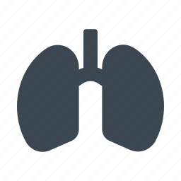 healthy, human, lung, medical, organ icon