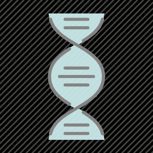 biology, dna, doctor, genetics, health, hospital, medical icon