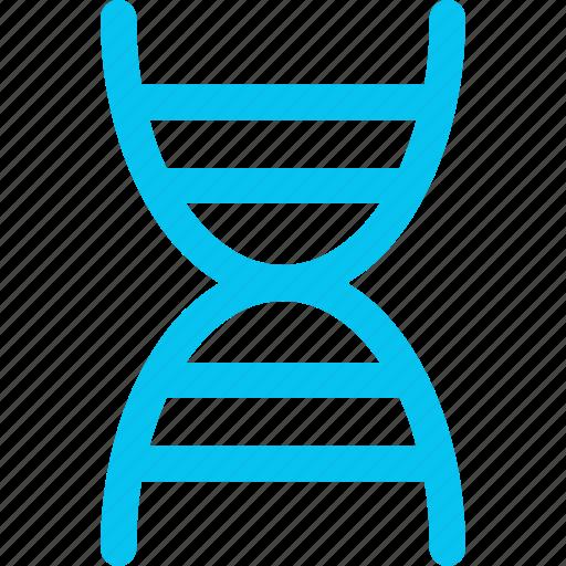 dna, molecule, science icon icon
