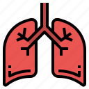 anatomy, human, lungs, medicine, organ icon
