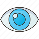 eye, eyeball, optical, organ, vision icon