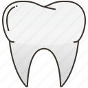 dental, healthcare, hospital, organ, tooth icon