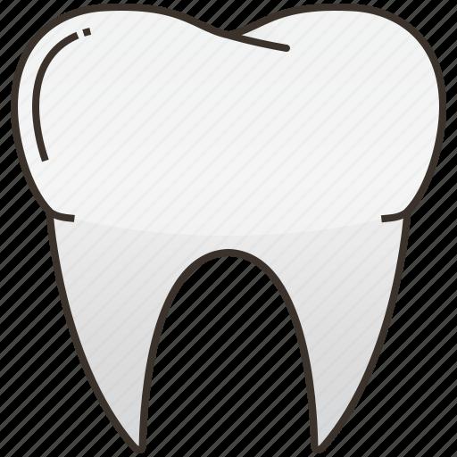 dental, healthcare, hospital, organ, tooth icon