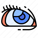ball, body, eye, part, retina