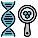 dna, laboratory, loupe, magnifier, medical