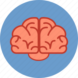 brain, brainstorm, communication, education, human, intelligence, mind icon
