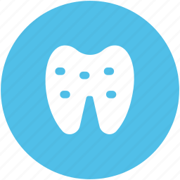 dental, dentistry, human teeth, molar, stomatology, teeth, tooth icon