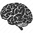 brain, idea, memory, mind, think, thinking, trainer icon