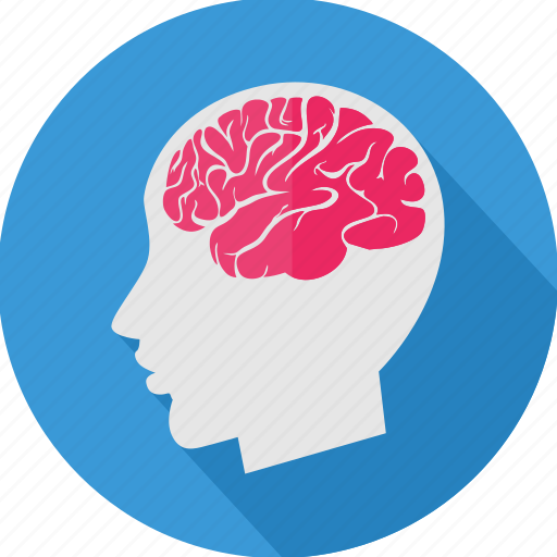 brain, ct, human, human brain, mind, scan icon