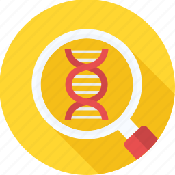 dna, dna test, genetic, genetics, genome, molecule, structure icon