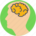 body organ, body part, brain, human brain, human organ icon