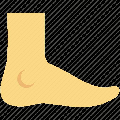 body organ, body part, foot, human foot, organ icon