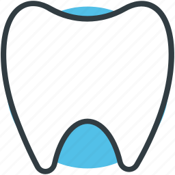healthy teeth, human tooth, molar, molar teeth, tooth icon