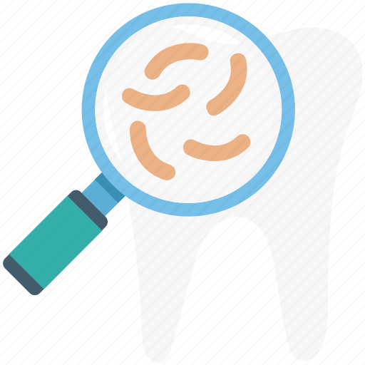 dentist, magnifying, search sperm, sperm icon