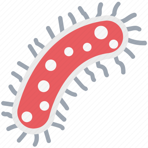 bacteria, ebola, germs, microbe, virus icon