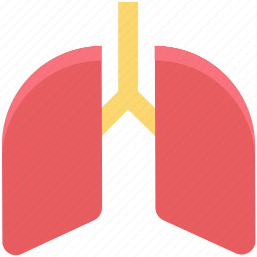 body part, breathe, human lungs, lungs, organ, pulmonary, pulmonology icon