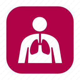 anatomy, health, healthcare, human body, lungs, medical, medicine icon
