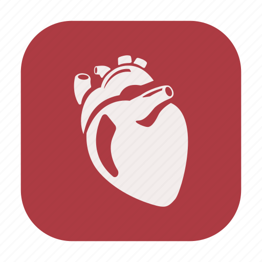 endurance, exercise, fitness, healthcare, heart, human heart, stamina icon