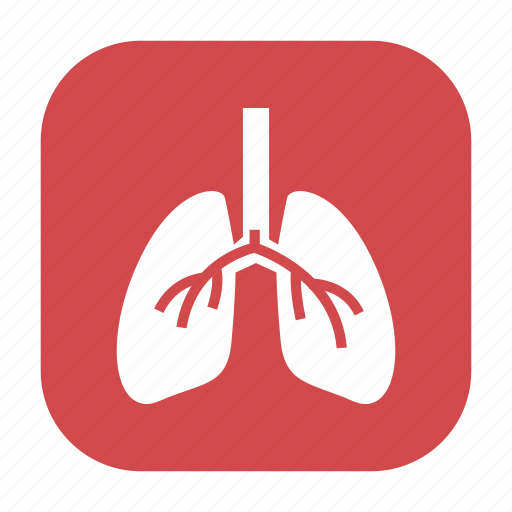 anatomy, cancer, health, healthcare, human, lungs, medical icon
