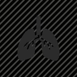 breath, healthcare, hospital, human body, lungs, medical, medicine icon