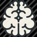 brain, health, idea, medical, neuroscience, organ, psychology