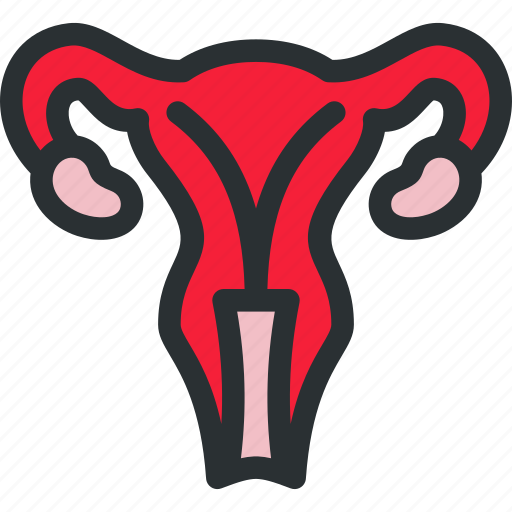 genitals, gynecology, health, medical, ovaries, reproductive, uterus icon