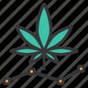 cannabis, herb, marijuana, report, statistics, trend