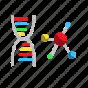 chromosome, dna, healthcare, medical icon