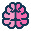 brain, medical, science icon