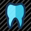 dental, medical, stomatologist, tooth
