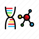 chromosome, dna, health, medical icon