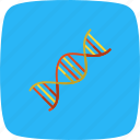 dna, genetics, helix icon