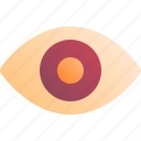eye, health, human, medical, organ icon