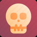 radiology, scan, skull, xray
