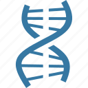 dna, genetics, genome, science