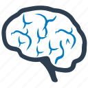 brain, brainstorm, creative, human, intelligence, mind icon