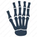 bones, hand, osteology, skeleton icon