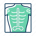 radiology, skeleton, xray icon