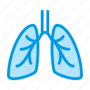 lungs, medical, phlebology icon
