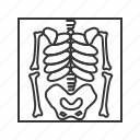 death, skeleton, x ray icon