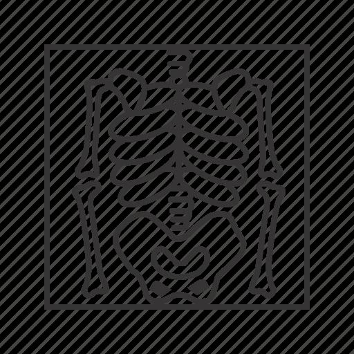 bones, death, skeleton, x ray icon