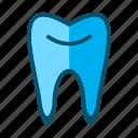 dental, dentist, medical, teeth, tooth
