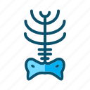 medical, ray, x, x ray icon